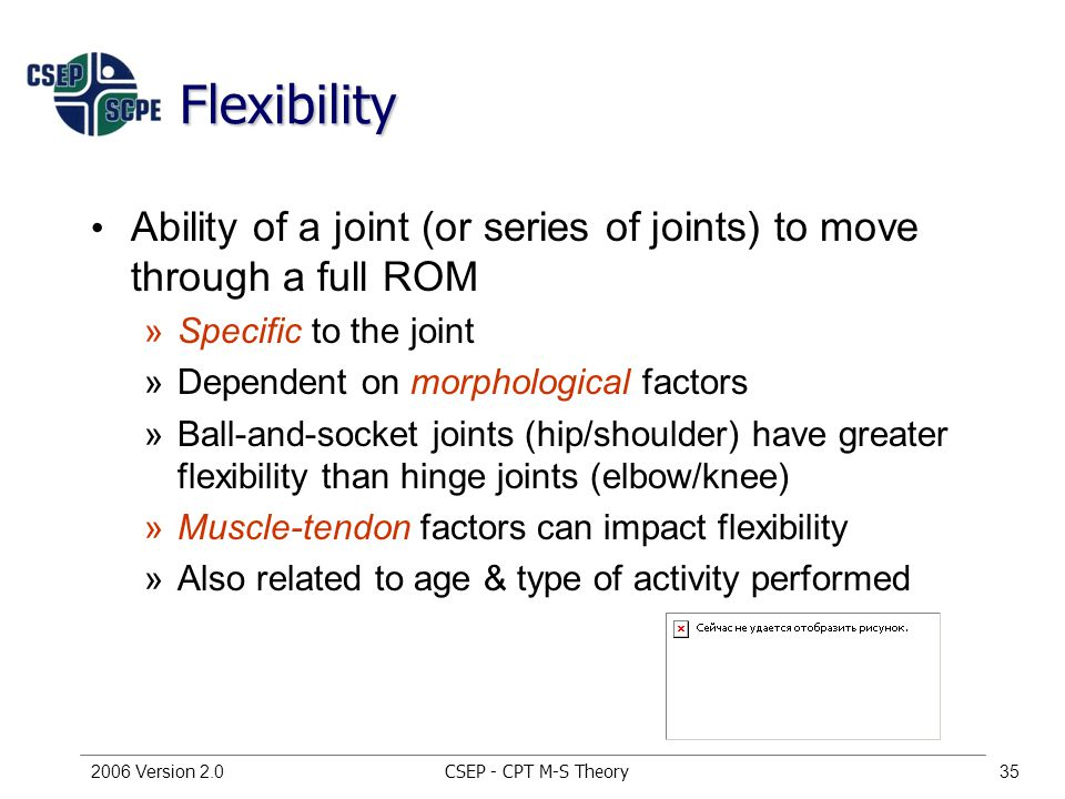 CSEP - CPT M-S Theory2006 Version 2.035 Flexibility Ability of a joint (or series of joints) to move through a full ROM »Specific to the joint »Dependent on morphological factors »Ball-and-socket joints (hip/shoulder) have greater flexibility than hinge joints (elbow/knee) »Muscle-tendon factors can impact flexibility »Also related to age & type of activity performed