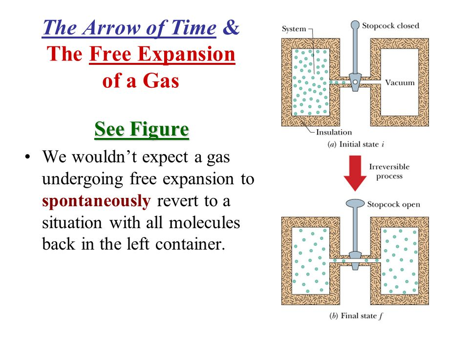 The Arrow of Time & The Free Expansion of a Gas See Figure We wouldn't expect a gas undergoing free expansion to spontaneously revert to a situation with all molecules back in the left container.