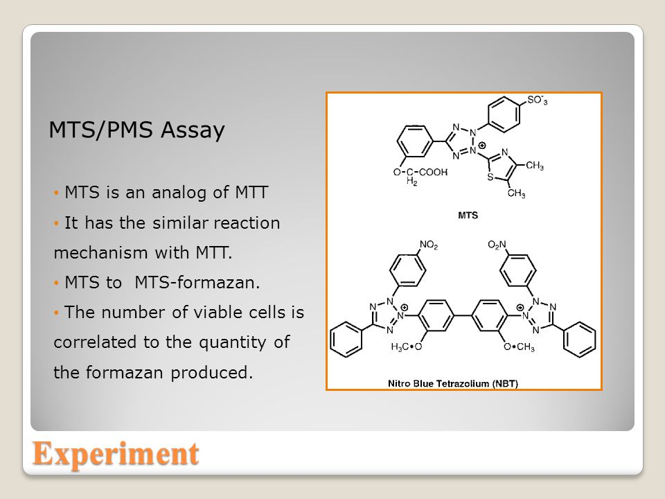 Experiment MTS/PMS Assay MTS is an analog of MTT It has the similar reaction mechanism with MTT.