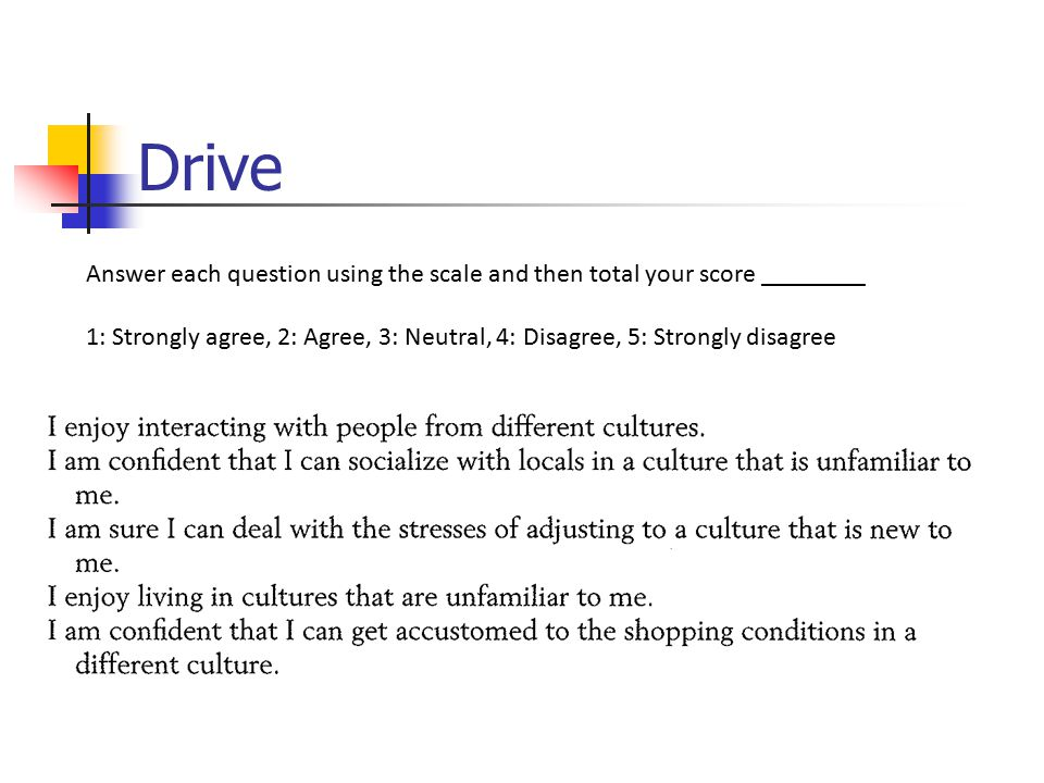 Drive Answer each question using the scale and then total your score ________ 1: Strongly agree, 2: Agree, 3: Neutral, 4: Disagree, 5: Strongly disagree