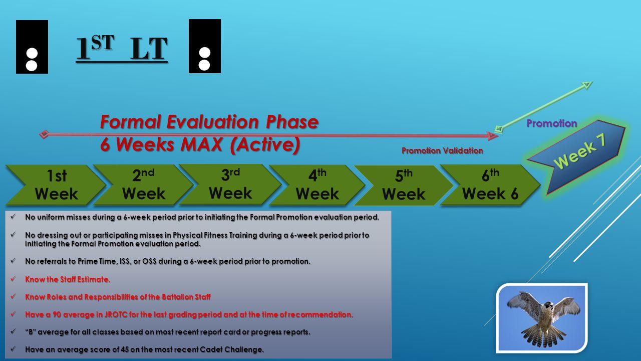 1st Week 4 th Week 2 nd Week 3 rd Week 5 th Week 6 th Week 6 Formal Evaluation Phase Formal Evaluation Phase 6 Weeks MAX (Active) 6 Weeks MAX (Active)