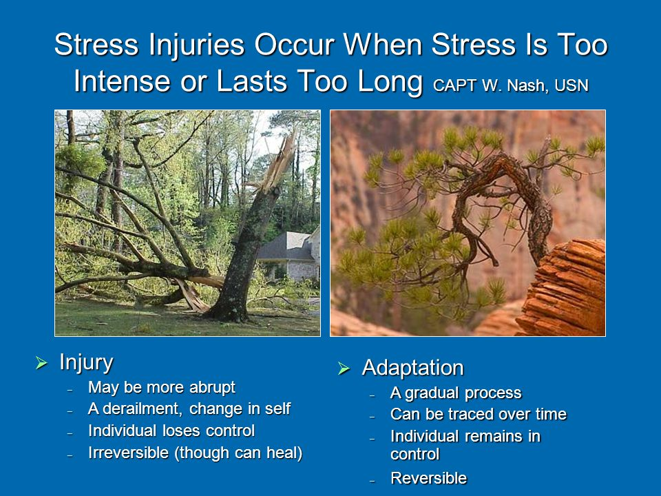 Stress Injuries Occur When Stress Is Too Intense or Lasts Too Long CAPT W.