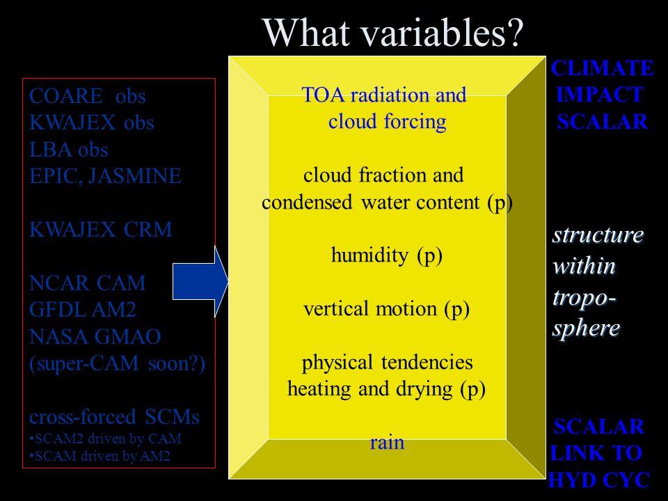 Datasets COARE obs KWAJEX obs LBA obs EPIC, JASMINE (more: ARM? etc?) KWAJEX 3D CRM NCAR CAM GFDL AM2 NASA GMAO (more: CAM-SP?) cross-forced SCMs SCAM