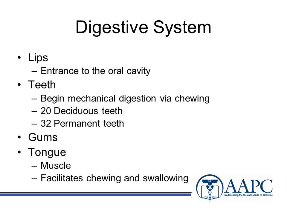 Diseases of the Digestive System Cholelithiasis Cholecystitis Neoplasms