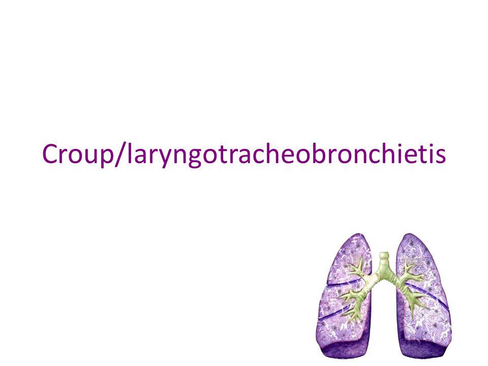 Croup/laryngotracheobronchietis
