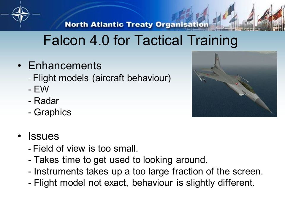 Falcon 4.0 for Tactical Training Enhancements - Flight models (aircraft behaviour) - EW - Radar - Graphics Issues - Field of view is too small. - Take