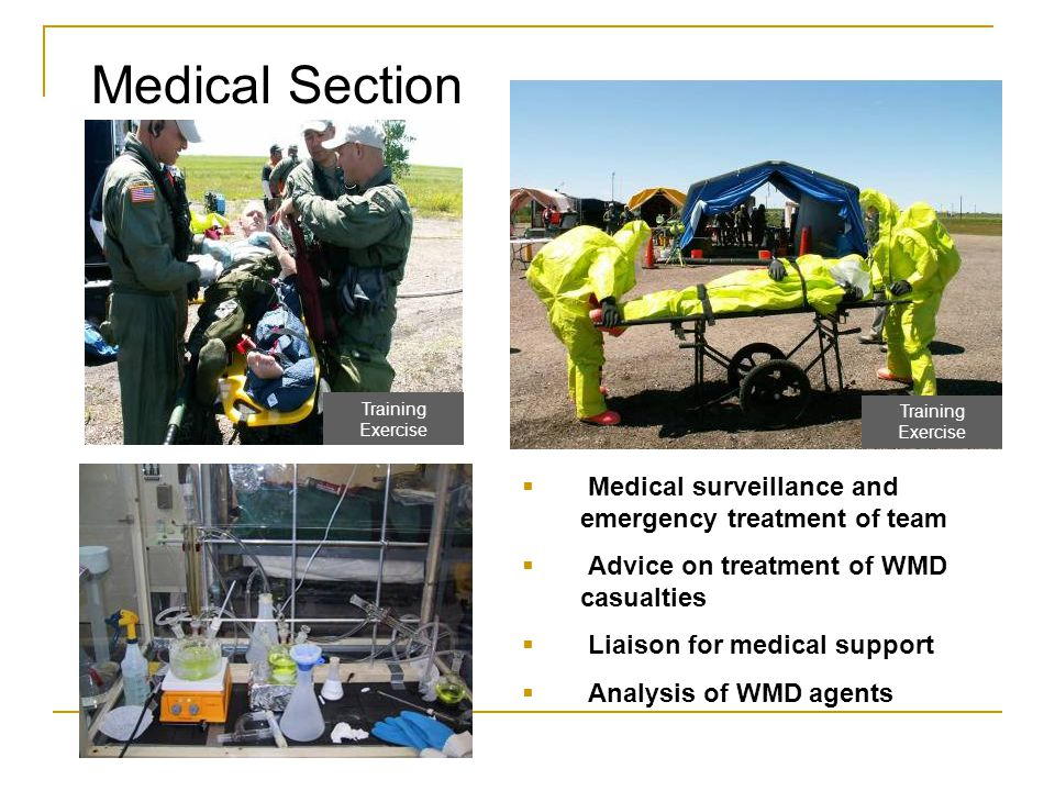 Medical Section  Medical surveillance and emergency treatment of team  Advice on treatment of WMD casualties  Liaison for medical support  Analysi