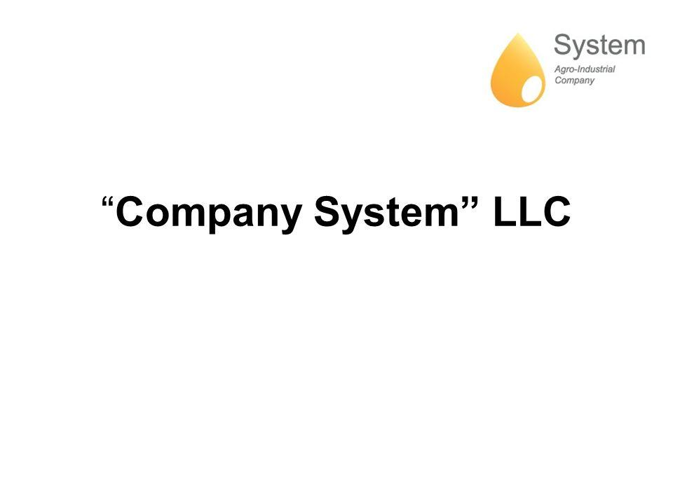 Company System LLC