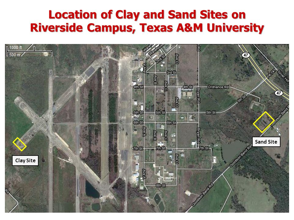 Location of Clay and Sand Sites on Riverside Campus, Texas A&M University Clay Site Sand Site