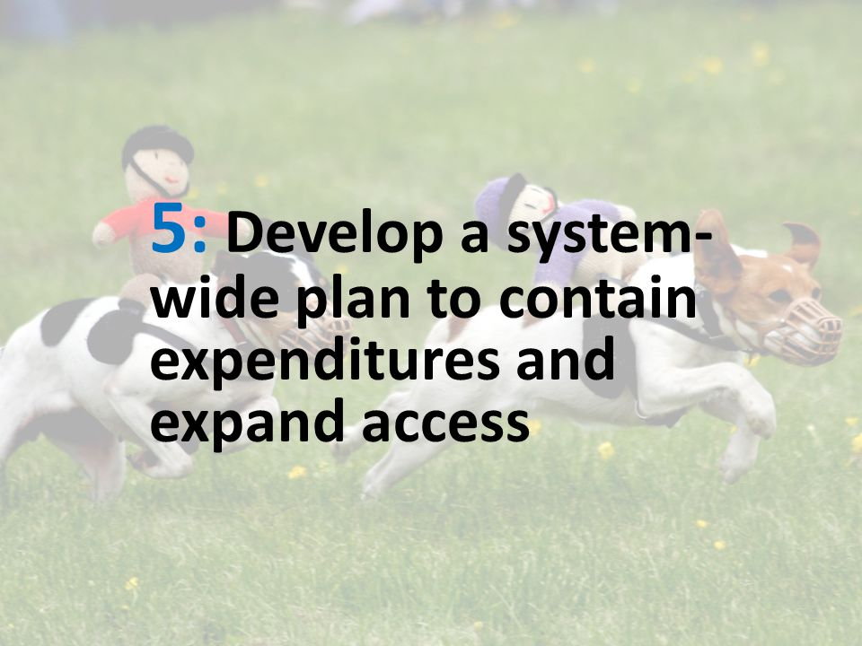 5: Develop a system- wide plan to contain expenditures and expand access