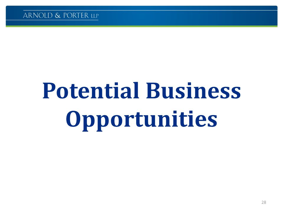 Potential Business Opportunities 28