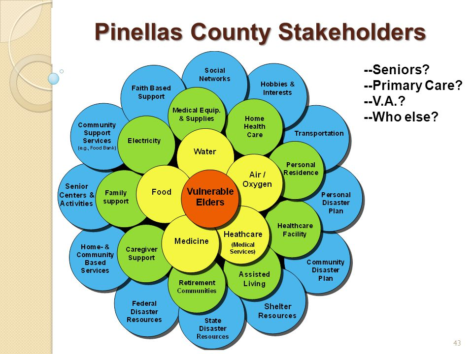 Pinellas County Stakeholders 43 --Seniors --Primary Care --V.A. --Who else