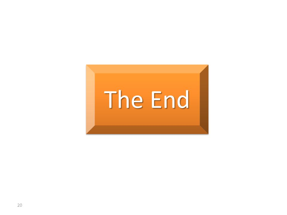 20 The End
