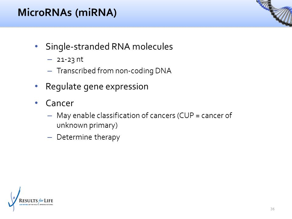 MicroRNAs (miRNA) Single-stranded RNA molecules – 21-23 nt – Transcribed from non-coding DNA Regulate gene expression Cancer – May enable classificati