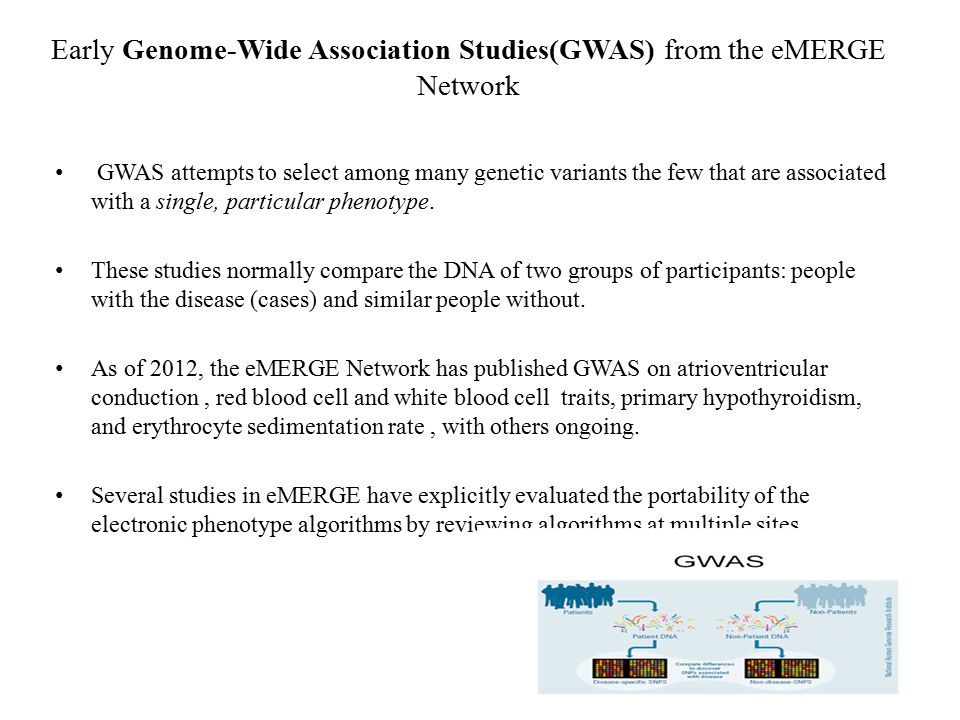 Early Genome-Wide Association Studies(GWAS) from the eMERGE Network GWAS attempts to select among many genetic variants the few that are associated wi