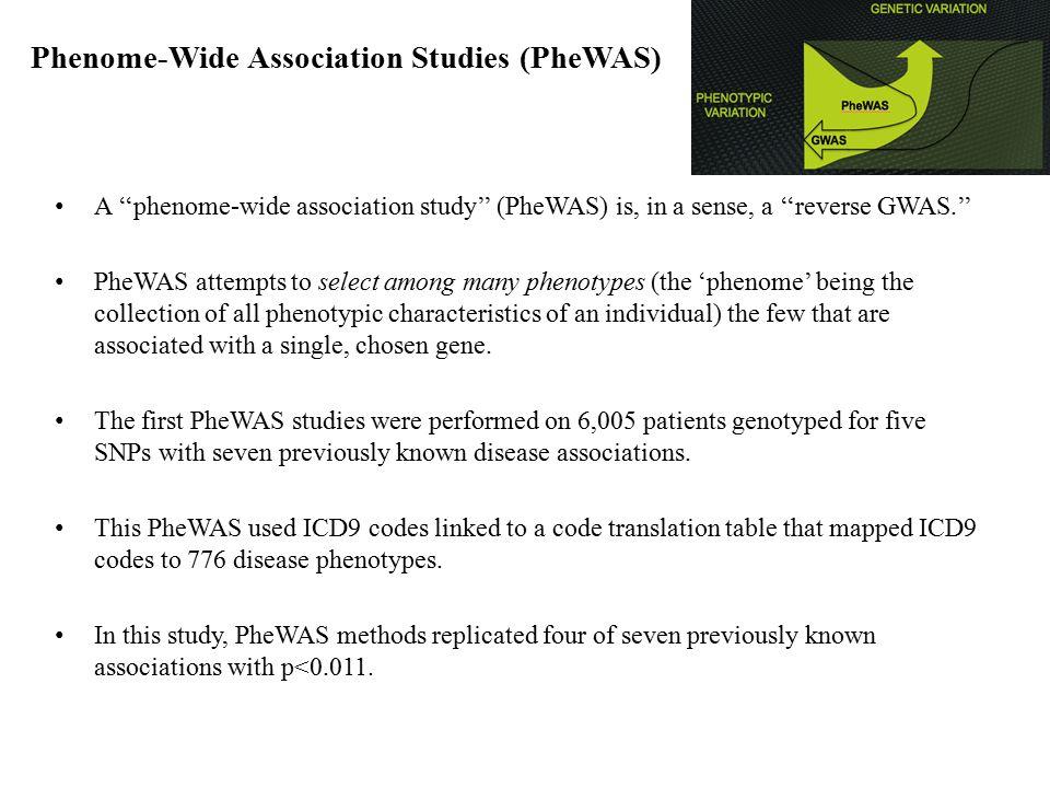 Phenome-Wide Association Studies (PheWAS) A ''phenome-wide association study'' (PheWAS) is, in a sense, a ''reverse GWAS.'' PheWAS attempts to select