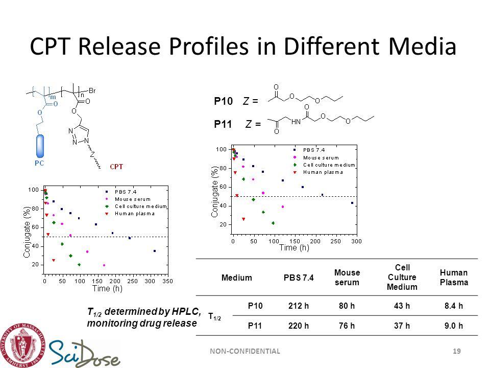 CPT Release Profiles in Different Media NON-CONFIDENTIAL19 P10 Z = P11 Z = MediumPBS 7.4 Mouse serum Cell Culture Medium Human Plasma T 1/2 P10212 h80