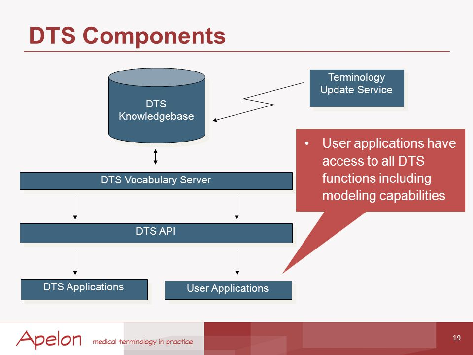 DTS Components 19 DTS Vocabulary Server DTS Applications User Applications DTS Knowledgebase DTS Knowledgebase Terminology Update Service DTS API User applications have access to all DTS functions including modeling capabilities