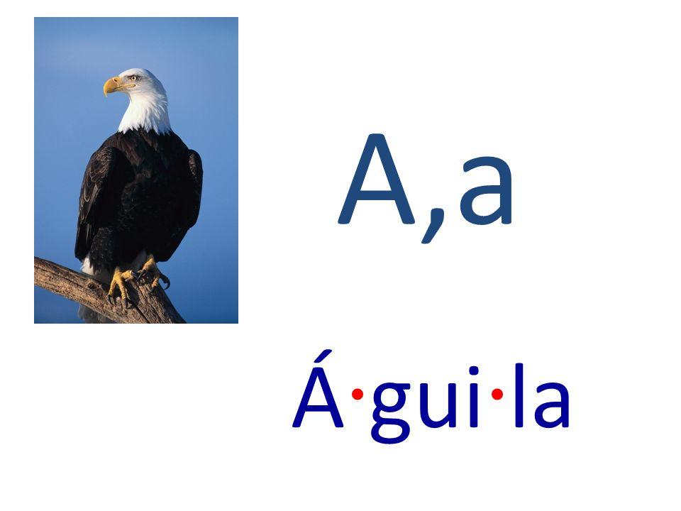 A,a Á · gui · la