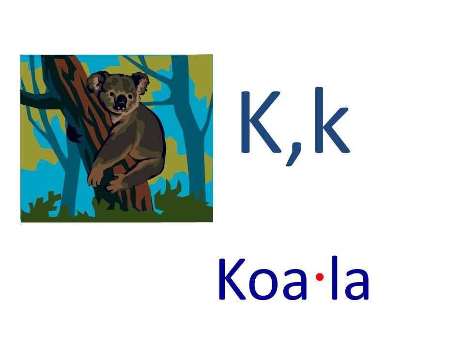 K,k Koa · la