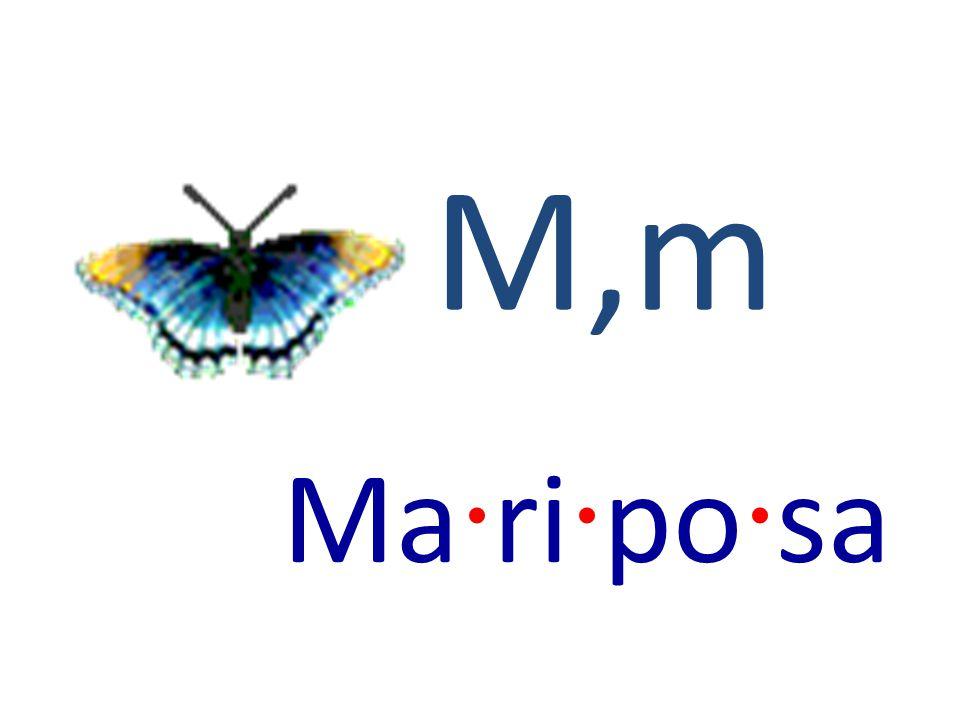 M,m Ma · ri · po · sa
