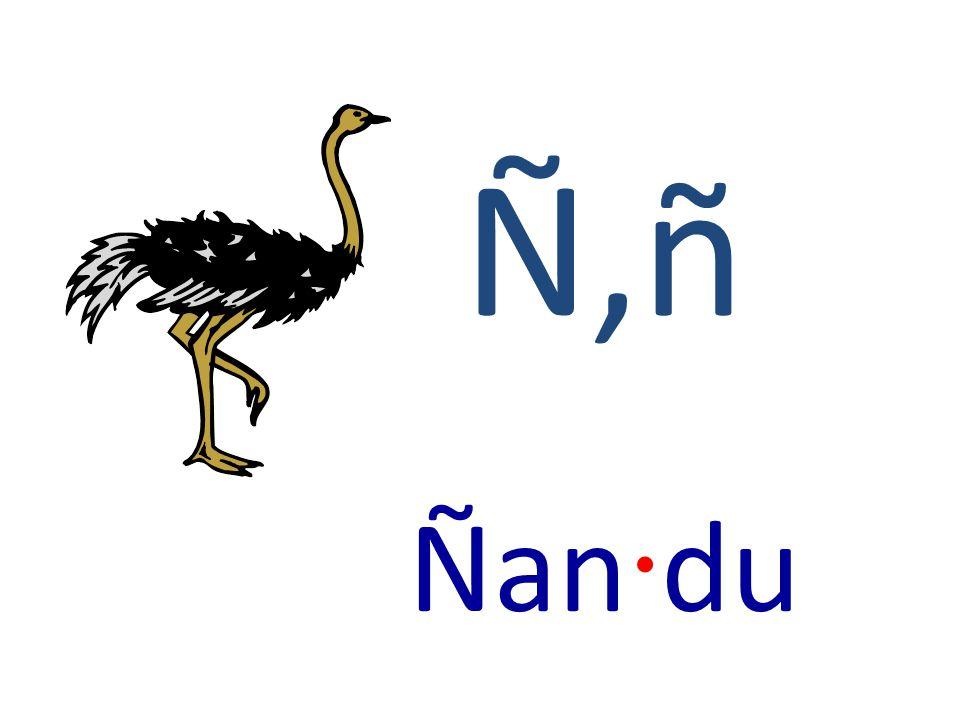 Ñ,ñ Ñan · du
