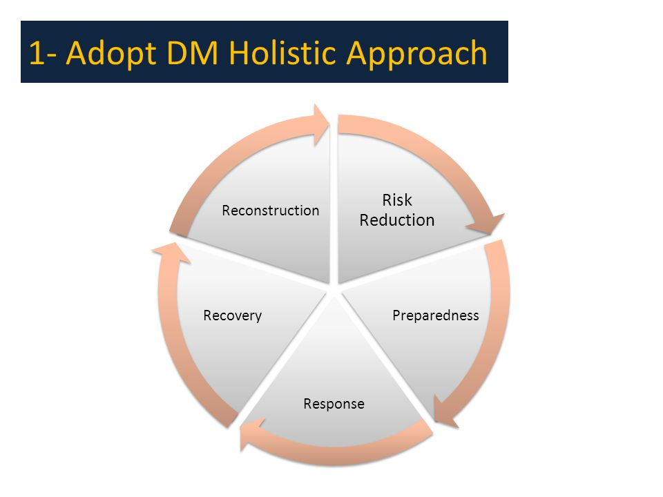 1- Adopt DM Holistic Approach Risk Reduction Preparedness Response Recovery Reconstruction