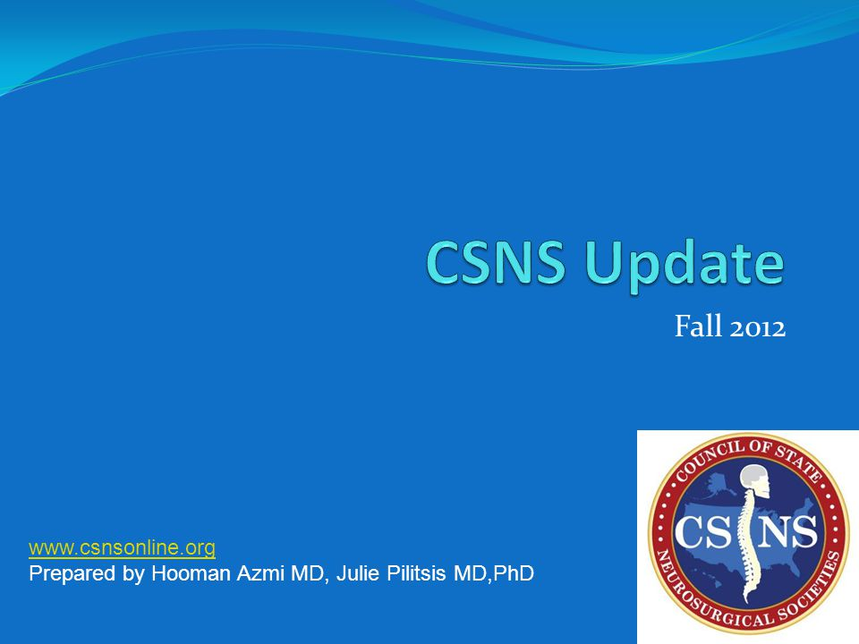 Fall 2012 www.csnsonline.org Prepared by Hooman Azmi MD, Julie Pilitsis MD,PhD