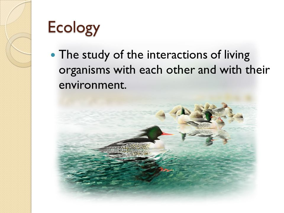 Ecology The study of the interactions of living organisms with each other and with their environment.