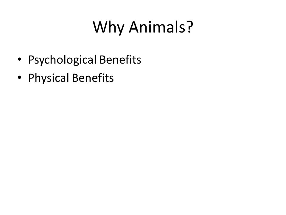 Why Animals? Psychological Benefits Physical Benefits