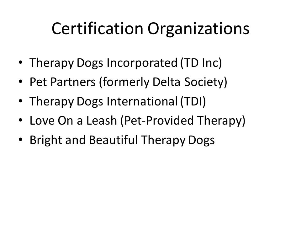 Certification Organizations Therapy Dogs Incorporated (TD Inc) Pet Partners (formerly Delta Society) Therapy Dogs International (TDI) Love On a Leash (Pet-Provided Therapy) Bright and Beautiful Therapy Dogs