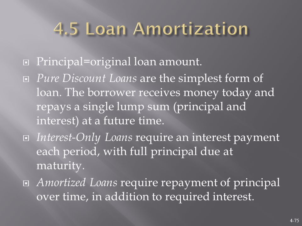 4-75  Principal=original loan amount.  Pure Discount Loans are the simplest form of loan.