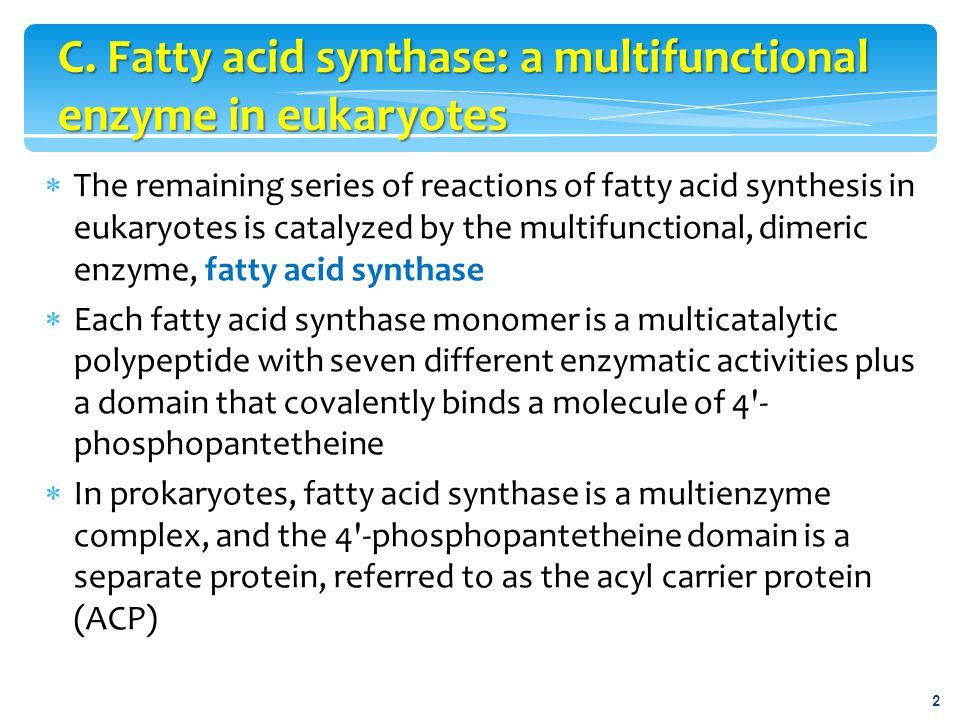  ACP is used below to refer to the phosphopantetheine-binding domain of the eukaryotic fatty acid synthase molecule  The reaction numbers in brackets below refer to Figure 16.9 Note:  The enzyme activities listed are actually separate catalytic domains present in each multicatalytic fatty acid synthase monomer.