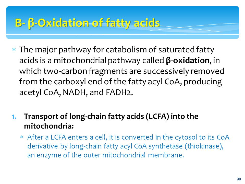  The major pathway for catabolism of saturated fatty acids is a mitochondrial pathway called β-oxidation, in which two-carbon fragments are successiv