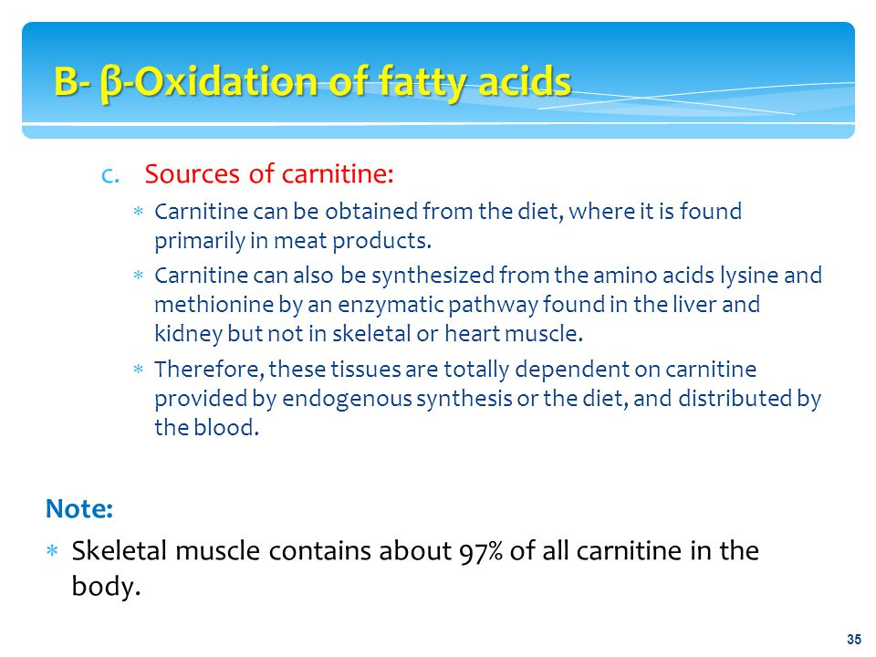 c.Sources of carnitine:  Carnitine can be obtained from the diet, where it is found primarily in meat products.  Carnitine can also be synthesized f