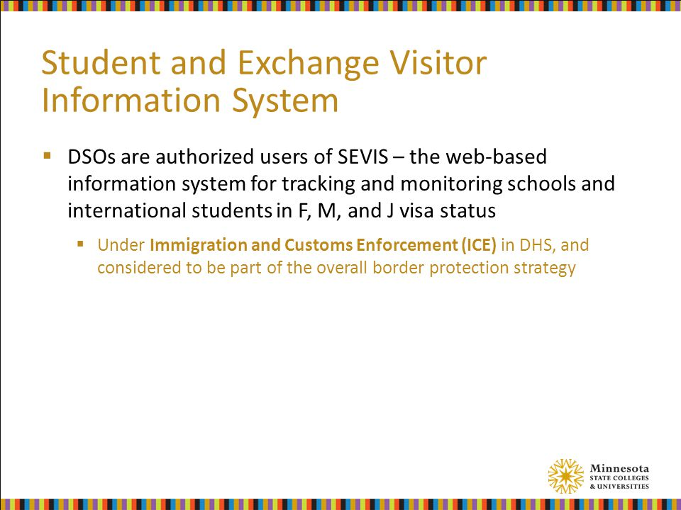 Student and Exchange Visitor Information System  DSOs are authorized users of SEVIS – the web-based information system for tracking and monitoring sc