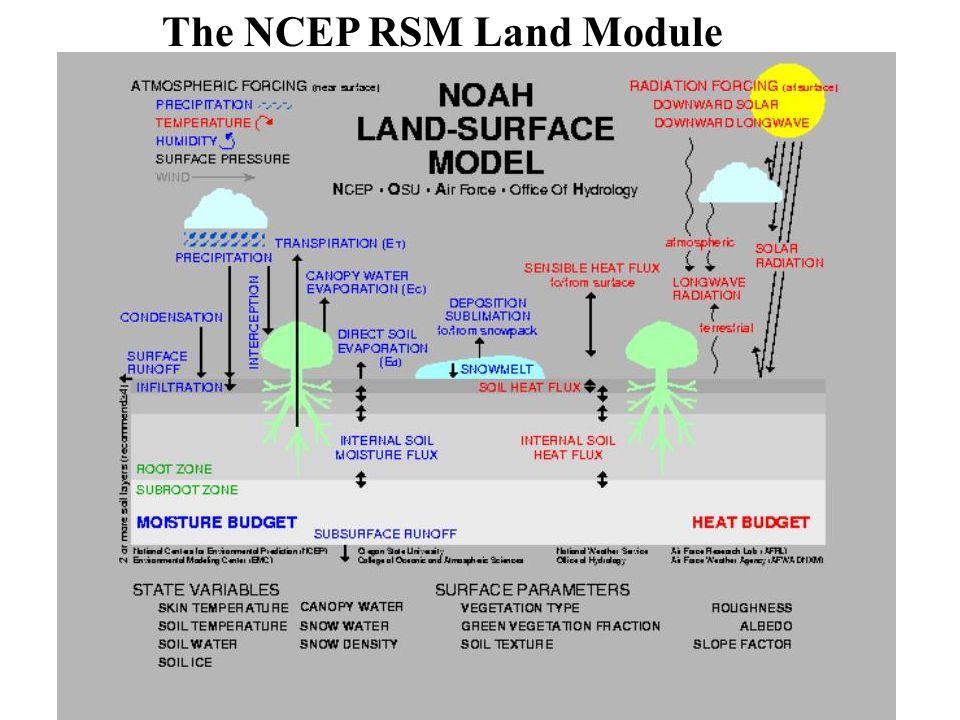 The NCEP RSM Land Module