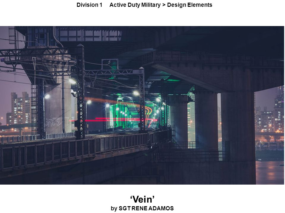 'Vein' by SGT RENE ADAMOS Division 1 Active Duty Military > Design Elements