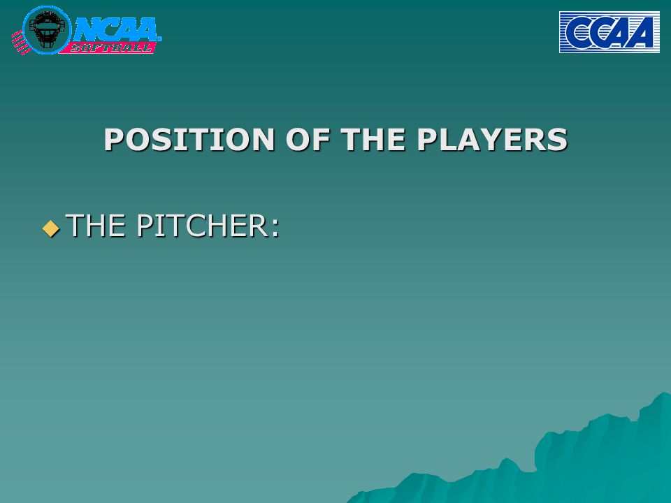  THE PITCHER: