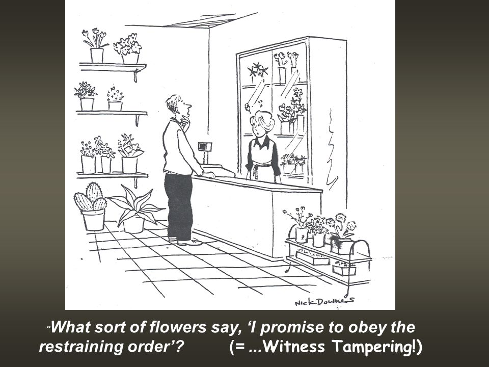 . What sort of flowers say, 'I promise to obey the restraining order' (=... Witness Tampering!)