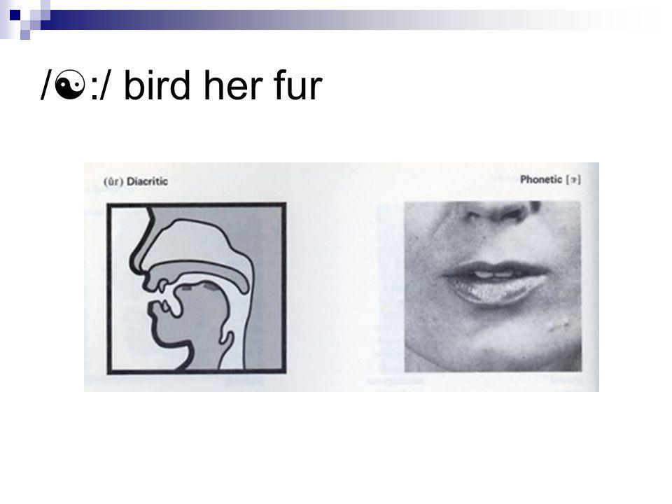 /  :/ bird her fur