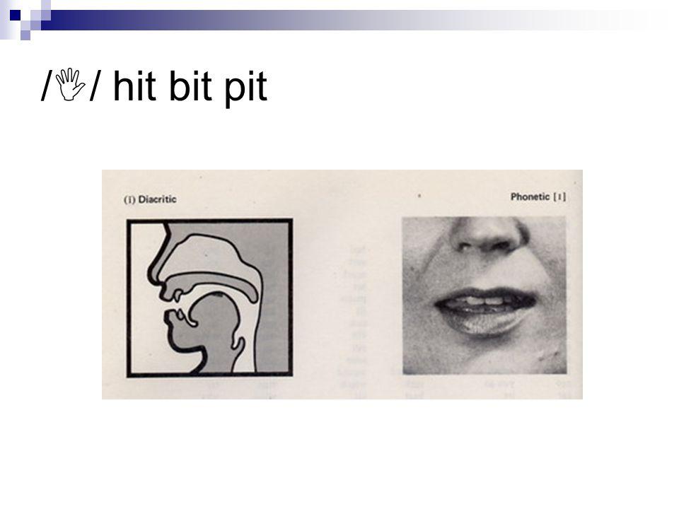 /  / hit bit pit