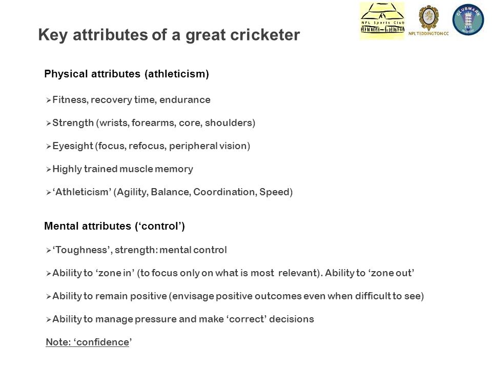 Mental attributes ('control') Key attributes of a great cricketer  'Toughness', strength: mental control  Ability to 'zone in' (to focus only on what is most relevant).