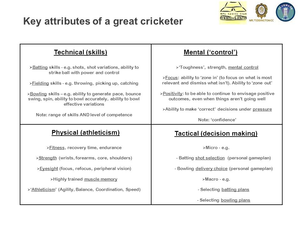 Technical (skills)Mental ('control') Physical (athleticism) Tactical (decision making)  Batting skills - e.g.