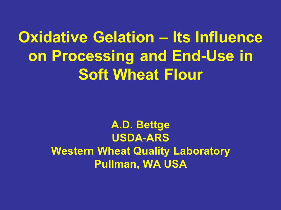 Interpretation (?) Oxidative gelation occurs between: Arabinoxylan polymers, protein polymers and a combination of the two Elevated pH decreases viscosity through inhibition of cross-linking Patent flours are distinctly more prone to oxidative gelation than are straight grade flours (unwitting breeding selection of club wheats?) Flour has sufficient free radicals (likely from lipid auto-oxidation in flours over a couple weeks old) to initiate oxidative gelation without other sources.