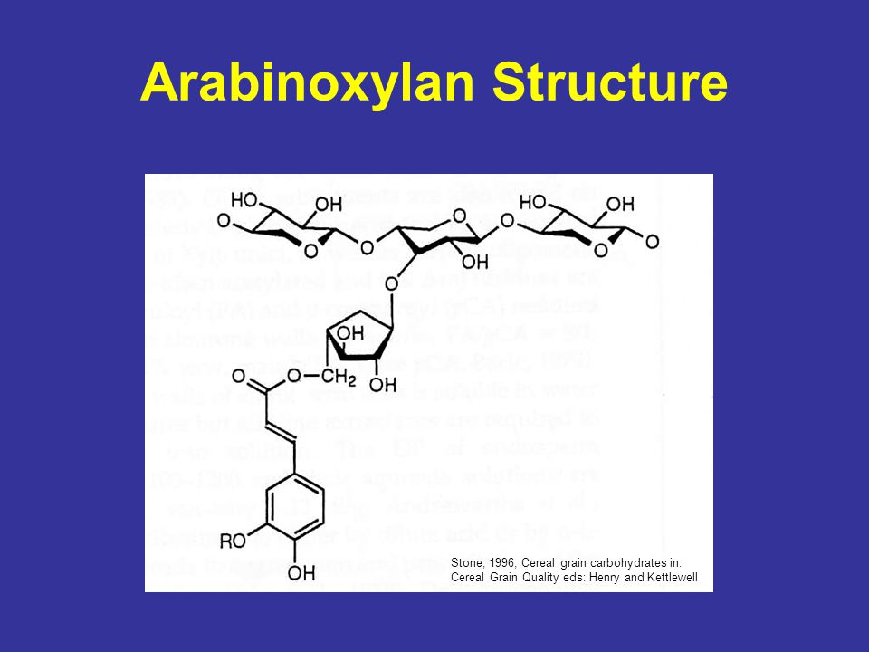 Arabinoxylan Structure Stone, 1996, Cereal grain carbohydrates in: Cereal Grain Quality eds: Henry and Kettlewell