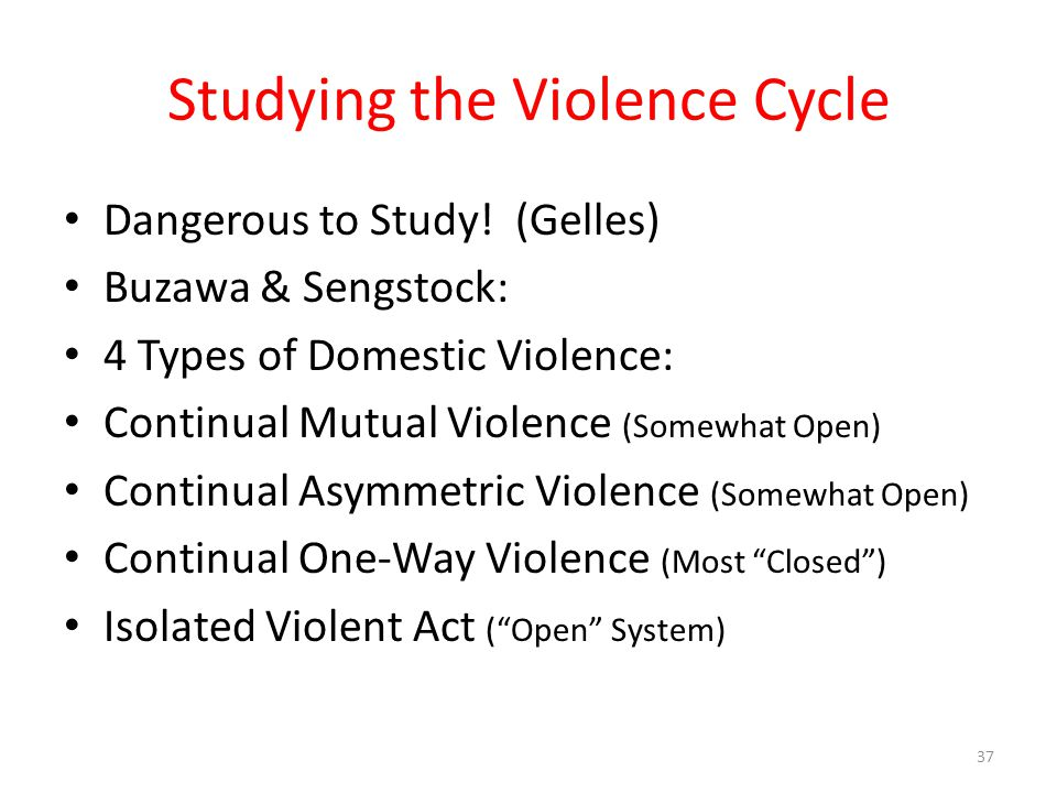 Studying the Violence Cycle Dangerous to Study.