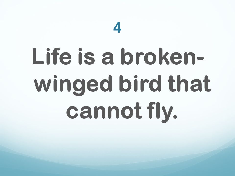 4 Life is a broken- winged bird that cannot fly.