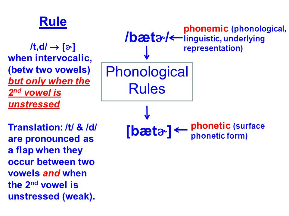 Phonology and phonetics are not the same thing.