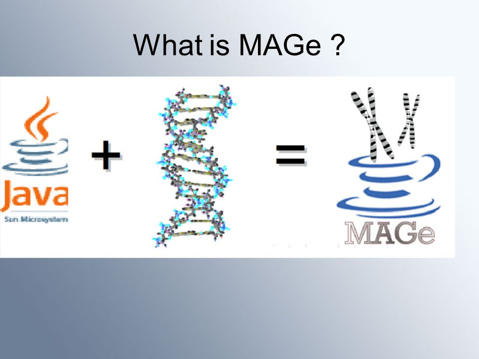 What is MAGe ?